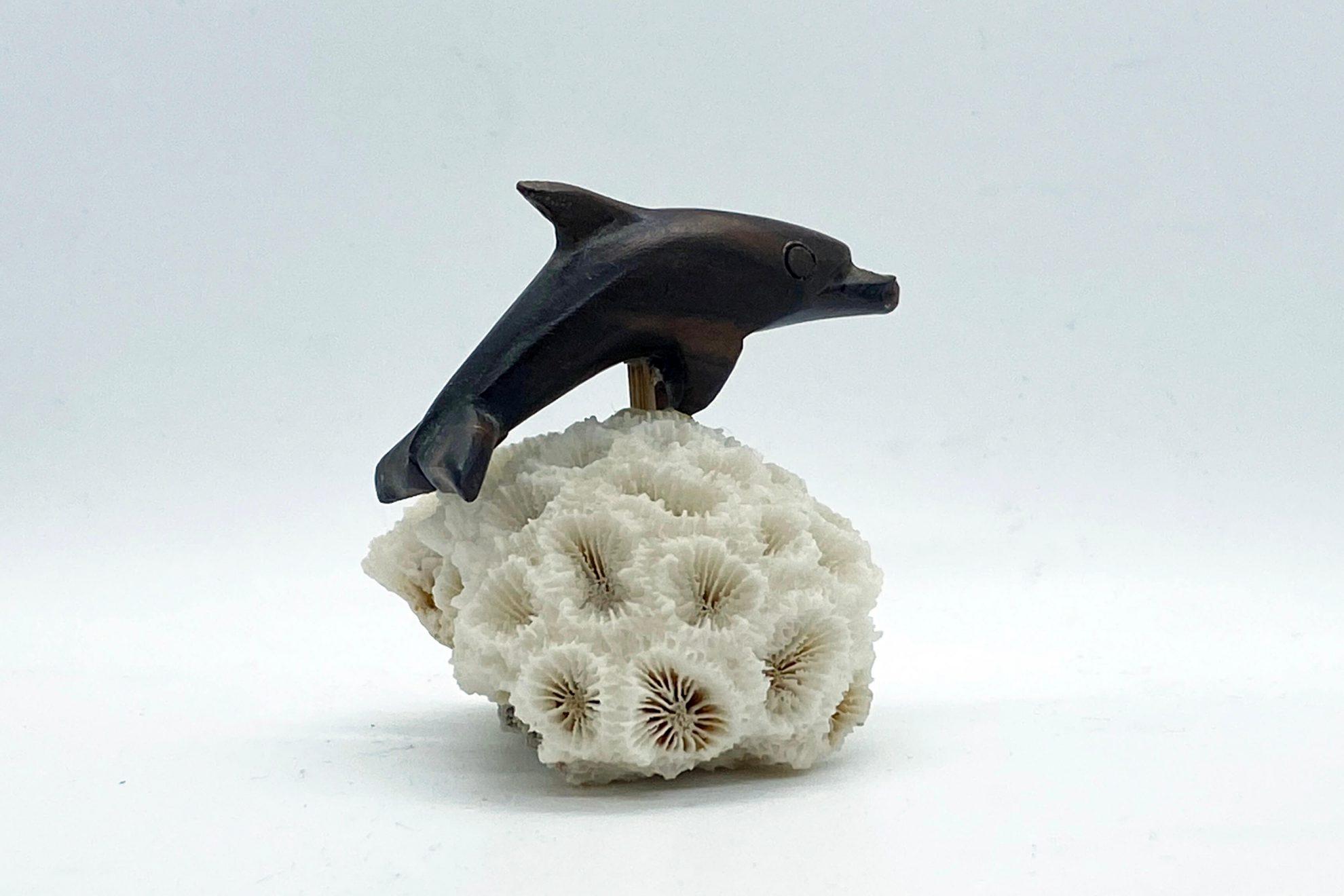 Dolfijn (hout) op koraal